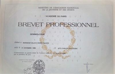 gemmologue pour l 'expertise de vos bijoux au bureau d achat d'or Chalon sur Saône
